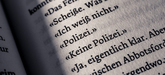 rezension-max-annas-die-mauer-wortgestalt-buchblog-text-2