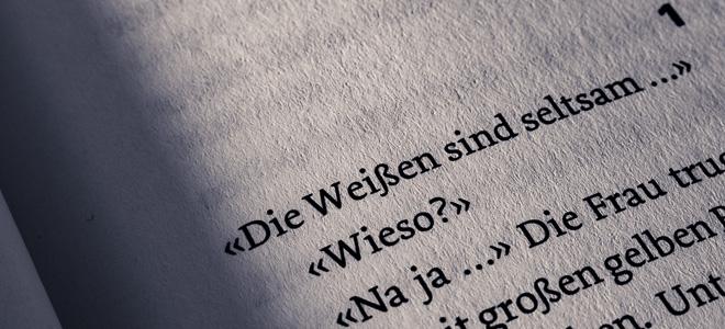rezension-max-annas-die-mauer-wortgestalt-buchblog-text