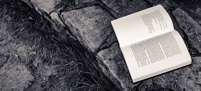 Buch aufgeschlagen auf Mauer